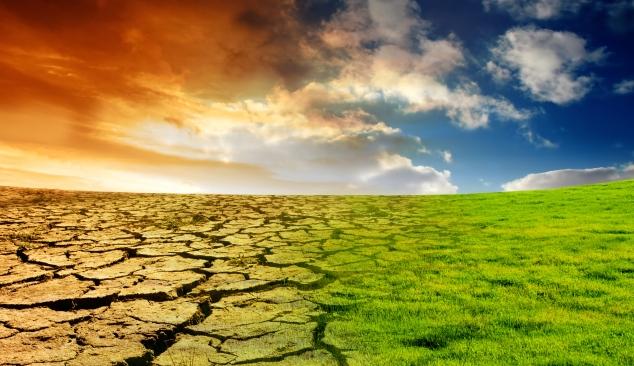 Alterações Climáticas em consulta